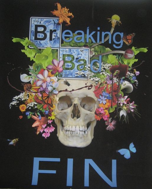 1 BreakingBadFin