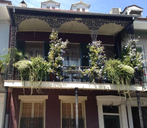 NOLA_house_flowers